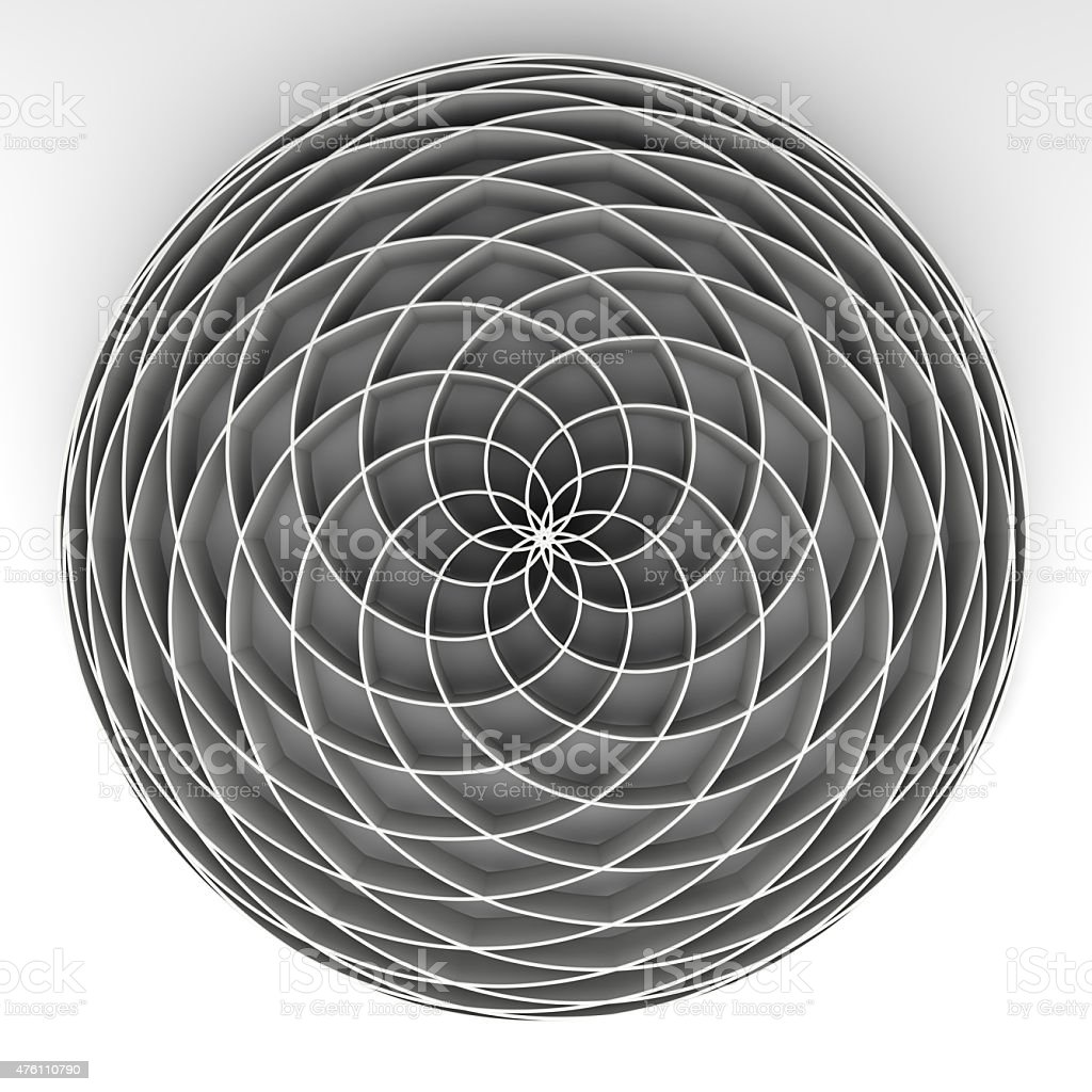 fibonacci flower stock photo