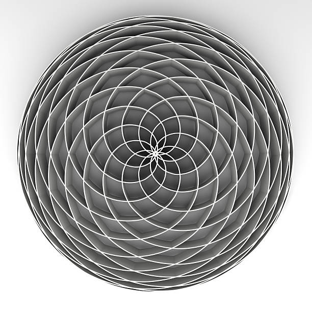 fibonacci flower - fibonacci pattern stock photos and pictures