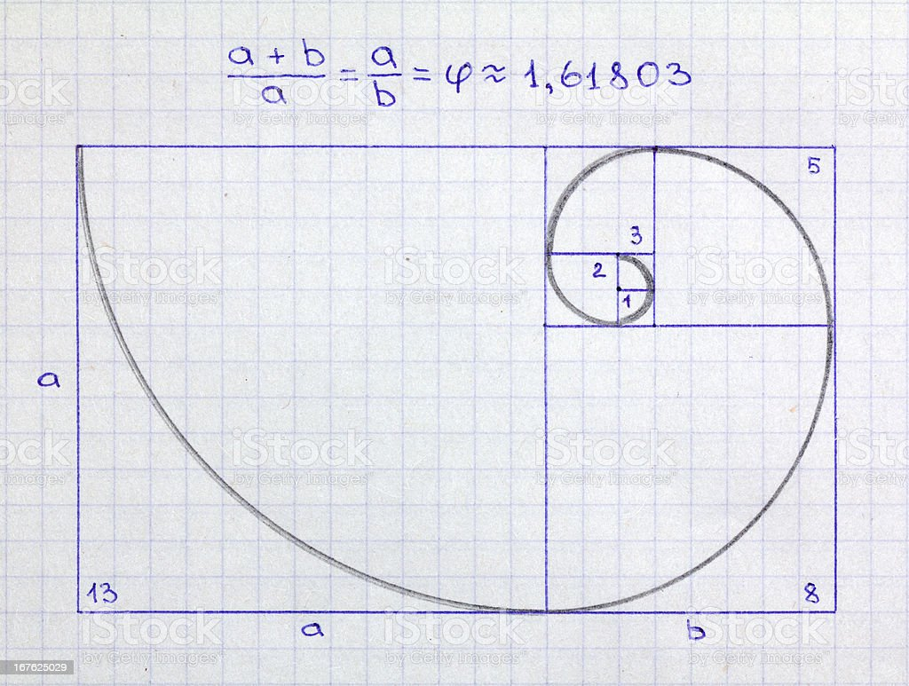 Fibonacci spiral stock photo
