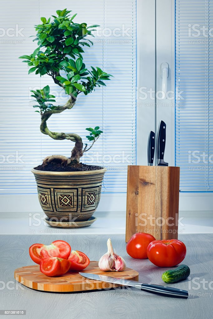 Ficus a bonsai near a window about blinds, tomatoes, garlic, a cucumber, knives and a chopping board стоковое фото