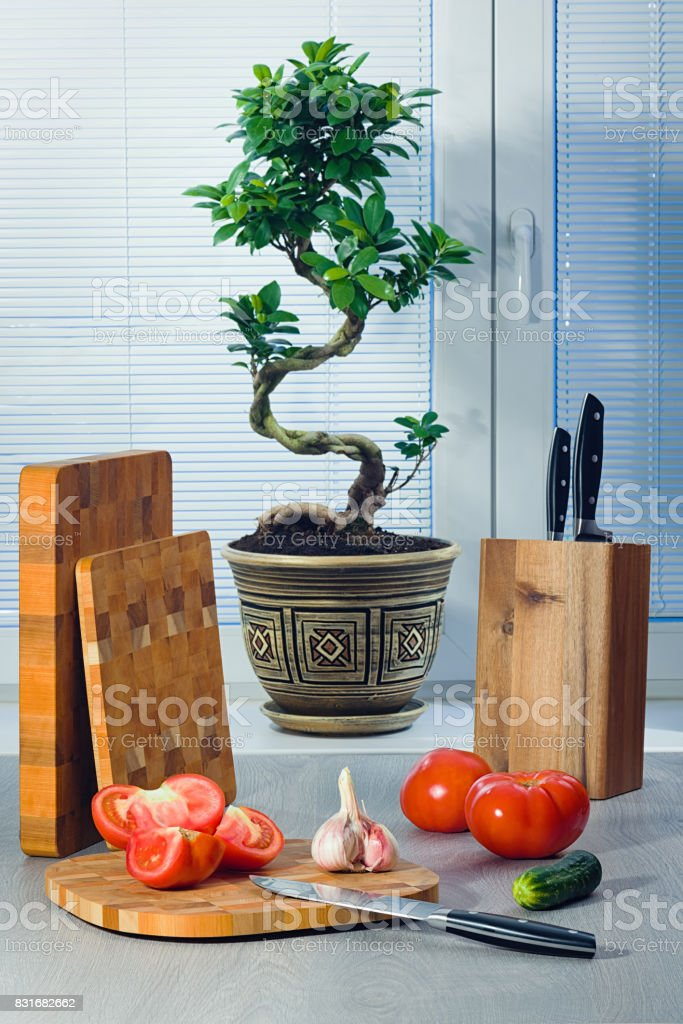 Ficus a bonsai near a window about blinds, tomatoes, garlic, a cucumber, knives and a chopping boards стоковое фото