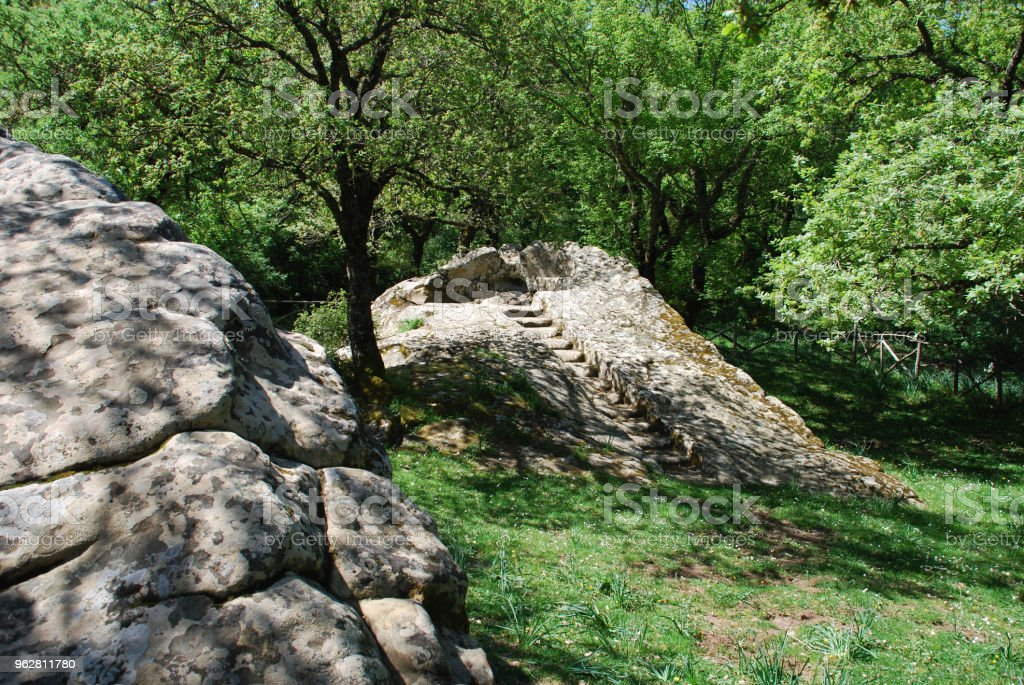 Ficuzza - Foto de stock de Bosque - Floresta royalty-free