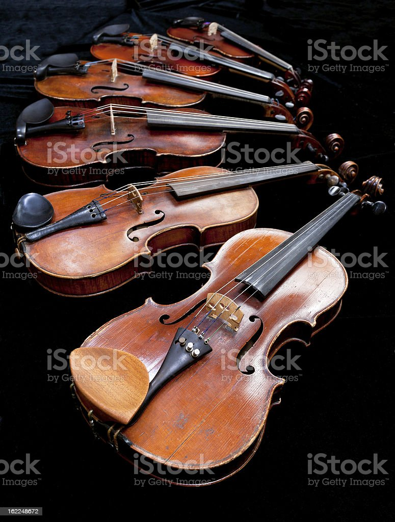 fiddles with black background royalty-free stock photo