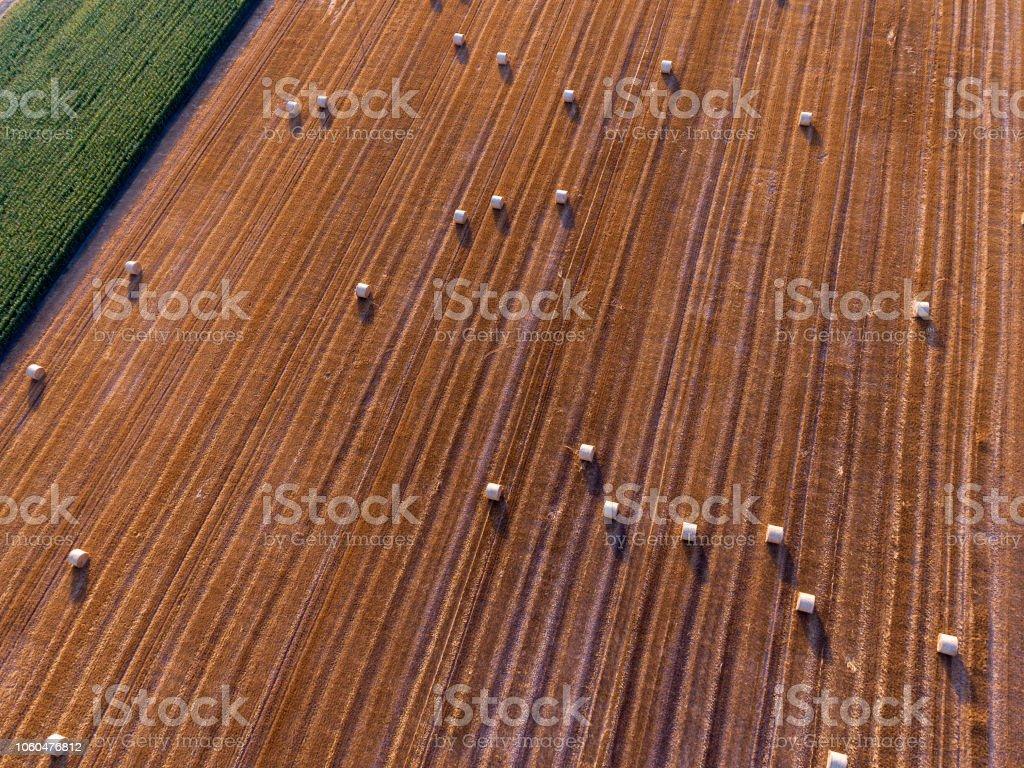 Feld-Luftbild – Foto