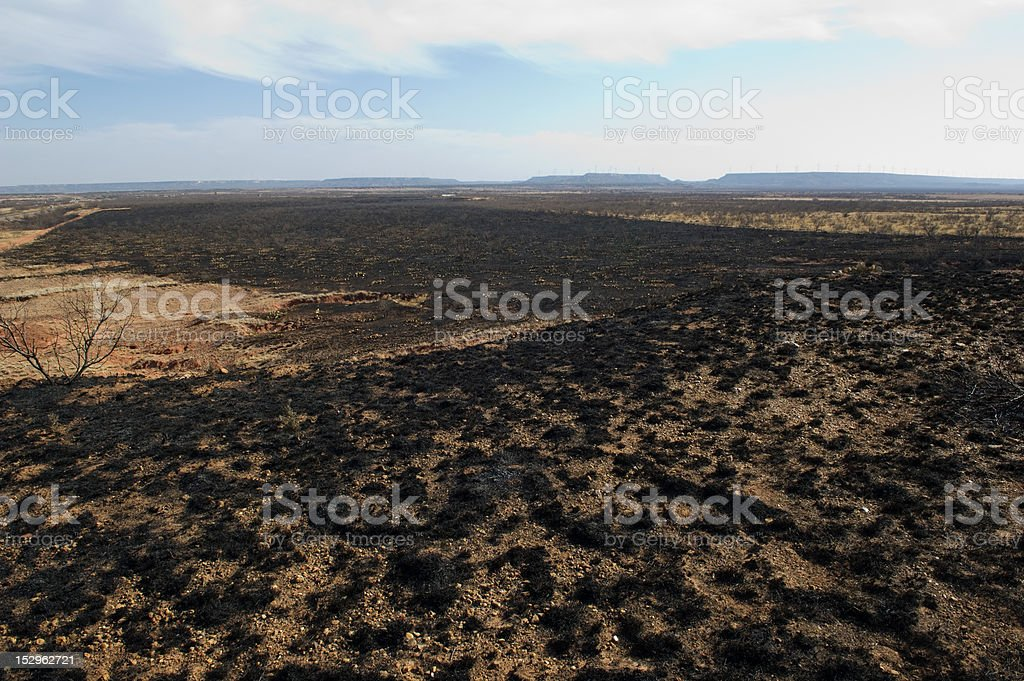 Field after a fire stock photo
