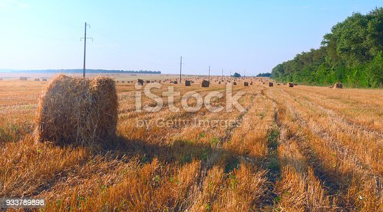 istock Field after harvesting.Straw bales at sunset.Warn sunlight.Summer countryside landscape.Agricultural industry.Concept of farming and agribusiness. 933789898