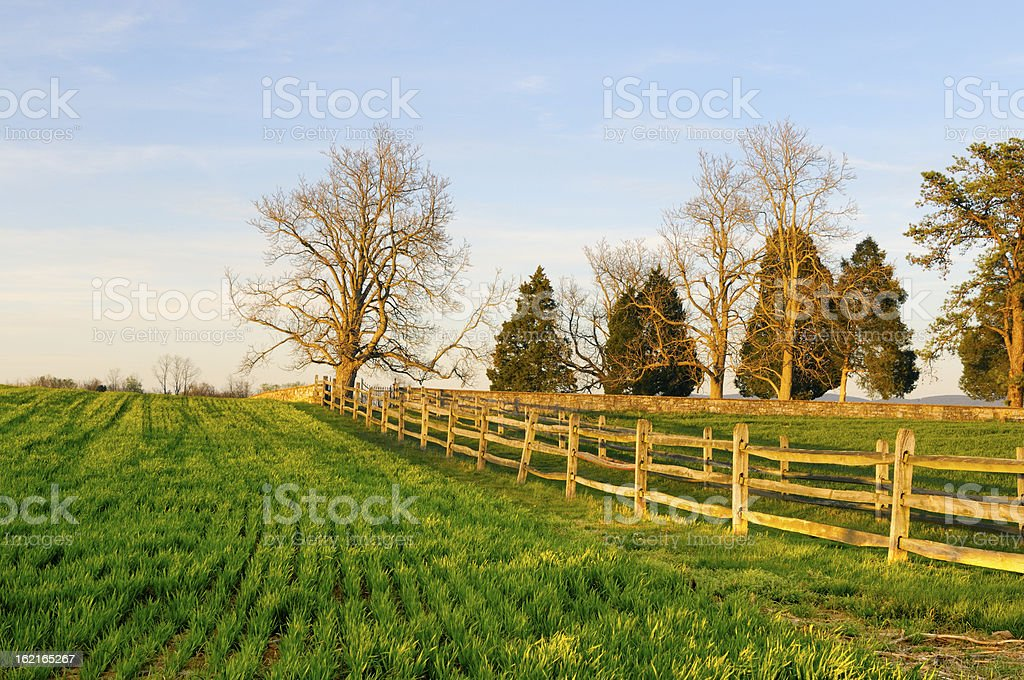 Field and Fence in Late Afternoon royalty-free stock photo
