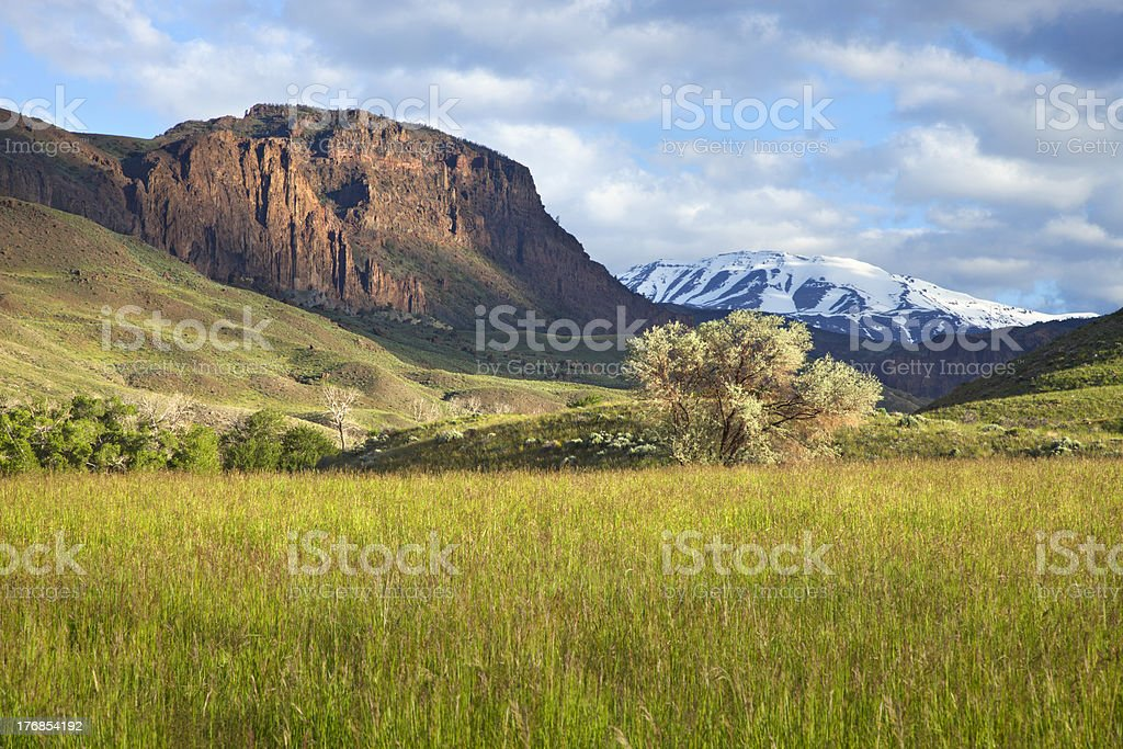 Field and mountains in Wyoming stock photo