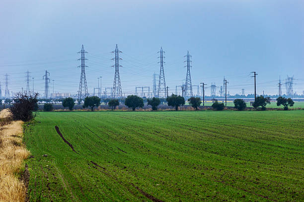 field and pylons stock photo