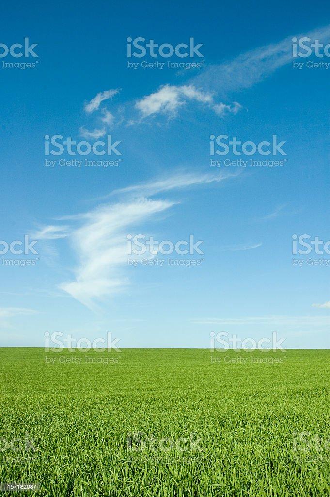 Field and Wispy Cloud stock photo