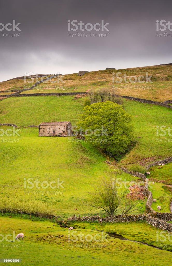 Field Barn in Upper Swaledale at Keld stock photo