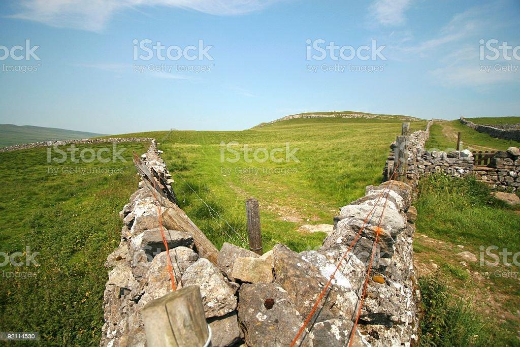 Field Corner - Landscape royalty-free stock photo