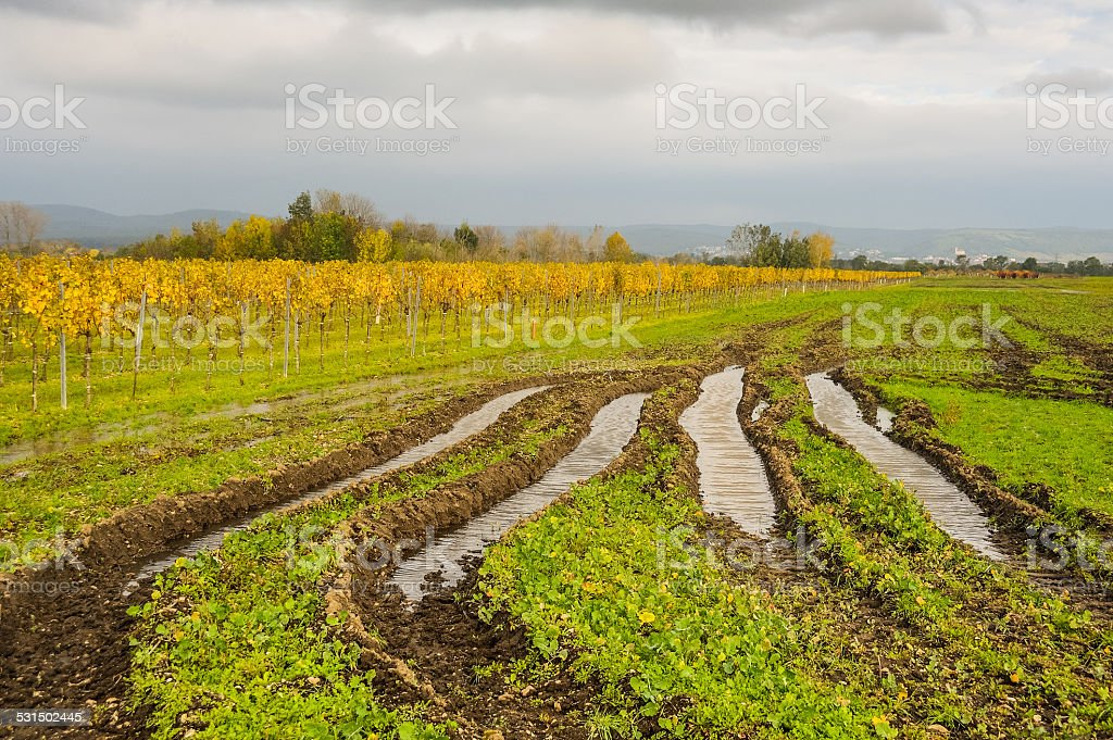 Field damage the field of tractor stock photo