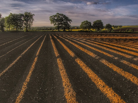 field farm agriculture worcestershire midlands england uk