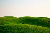 草のフィールド