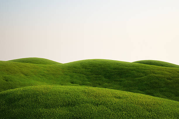 A field full of green grass and hills 3d rendering of a green field hill stock pictures, royalty-free photos & images