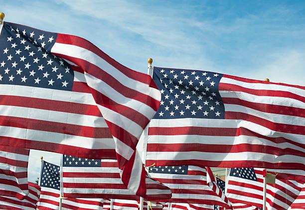 Field Full of Waving American Flags
