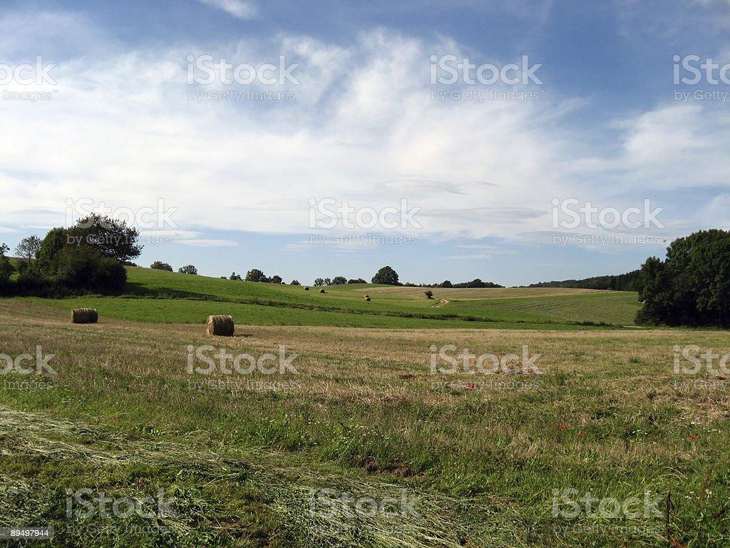 Campo di Ain, Francia foto stock royalty-free