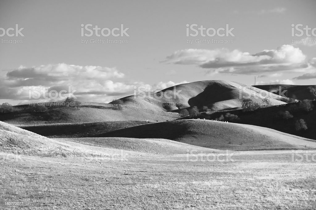 Field in Black and White stock photo
