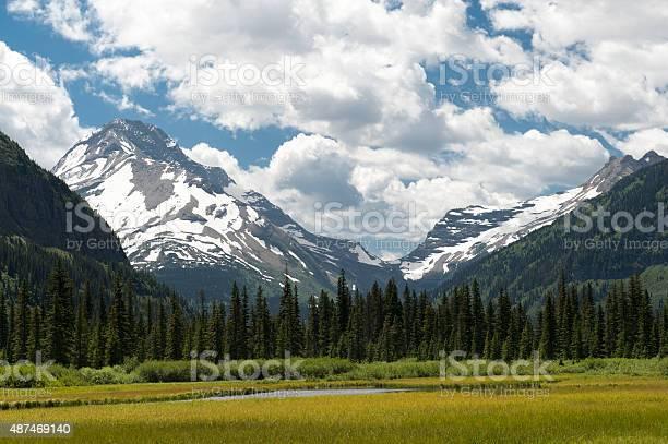 Photo of Field in Glacier National Park Montana