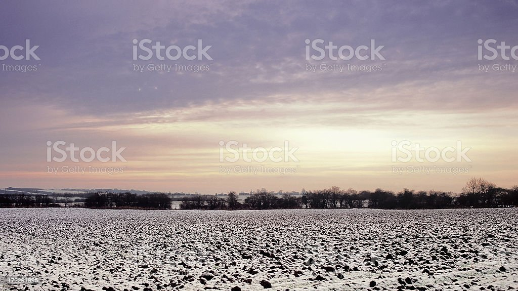 field in winter royalty-free stock photo