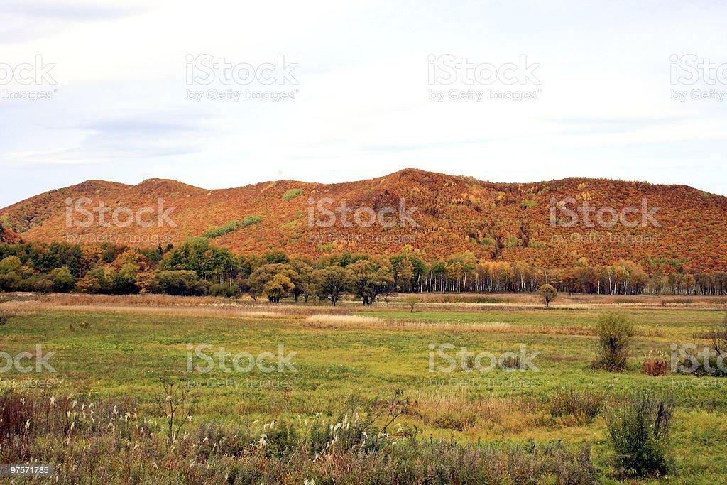 Field near mountains royalty-free stock photo