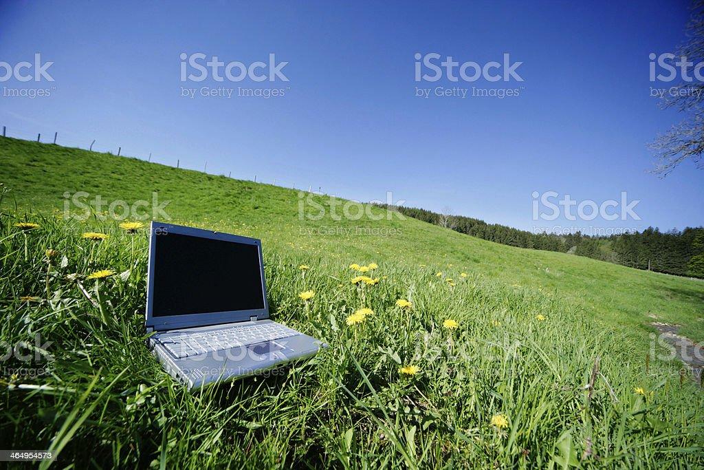 Field Notebook stock photo