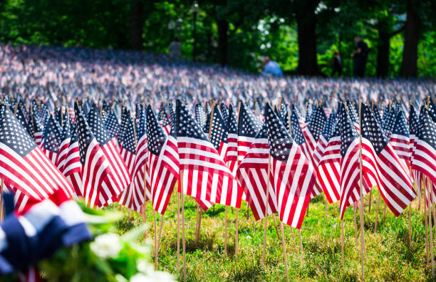 a field of american flags on a grassy hill in boston common park - memorial day стоковые фото и изображения