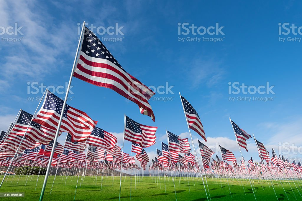 Field of American Flags A field of hundreds of American flags.  Commemorating veteran's day, memorial day or 9/11. American Flag Stock Photo