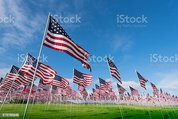 Field Of American Flags Stock Photo - Download Image Now