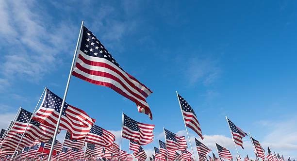 field of american flags - memorial day fotografías e imágenes de stock