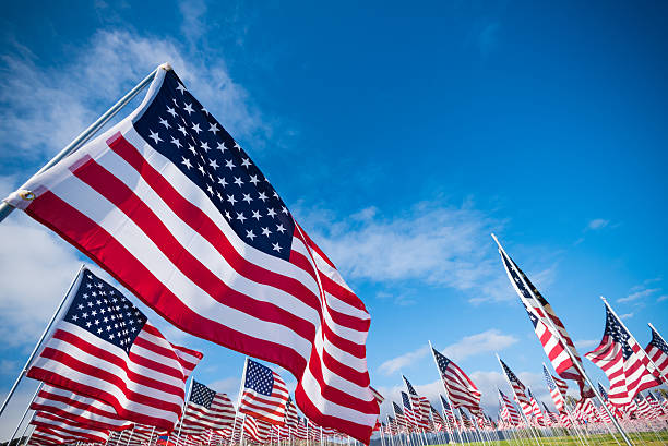 field of american flags - memorial day stock pictures, royalty-free photos & images