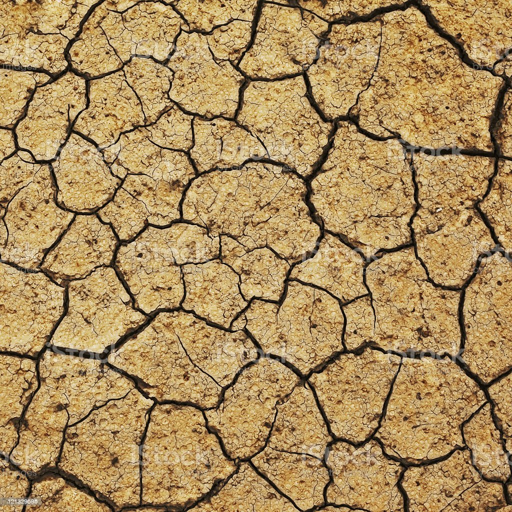field of baked earth royalty-free stock photo