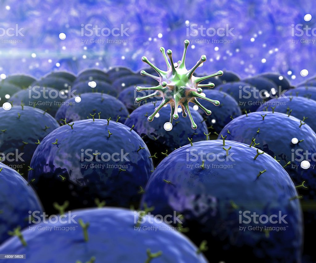 field of cells stock photo