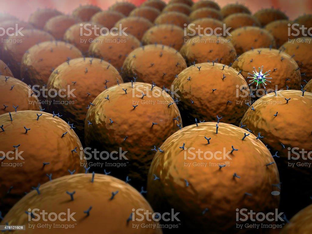 field of cells, virus stock photo