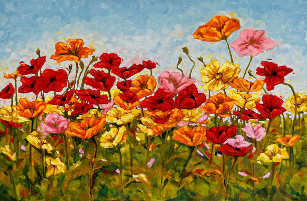 field of colorful poppies oil painting - yağlı boya resim stok fotoğraflar ve resimler
