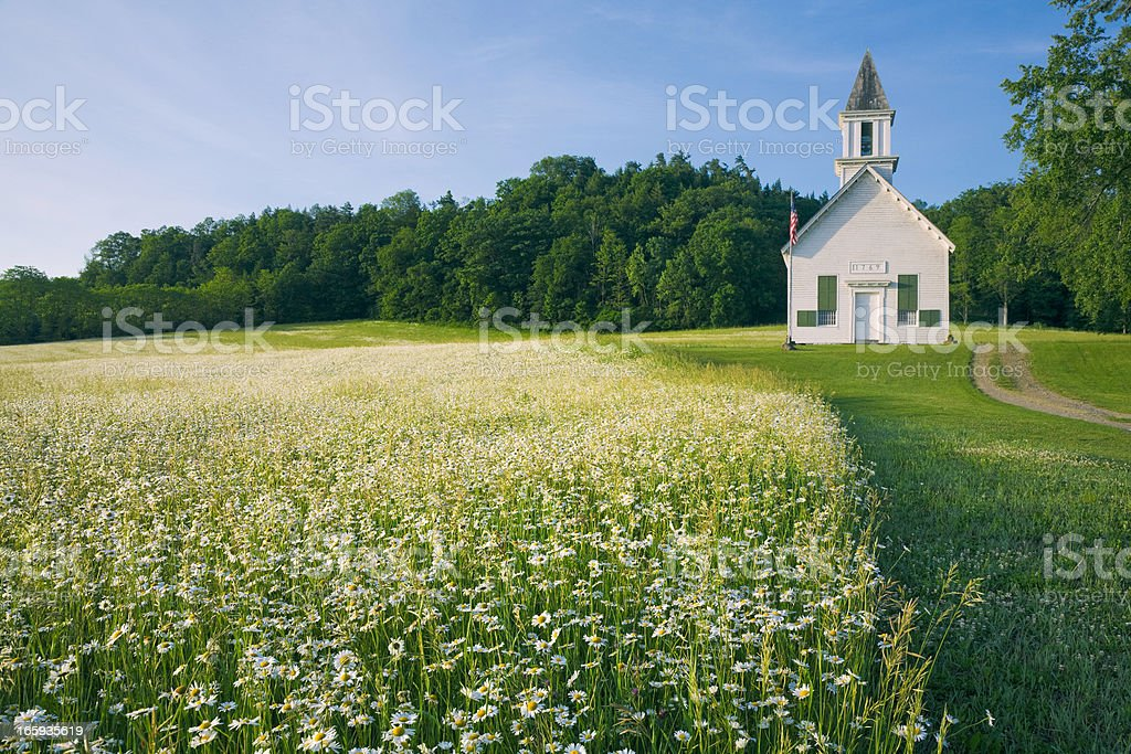 field of daisy wildflowers and old country church stock photo