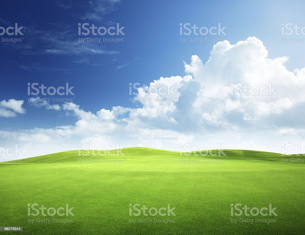 field of grass and perfect sky royalty-free stock photo
