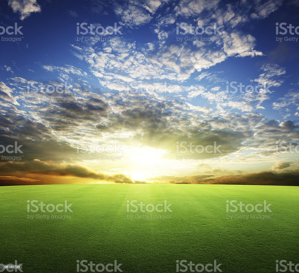field of grass and perfect sunset sky royalty-free stock photo