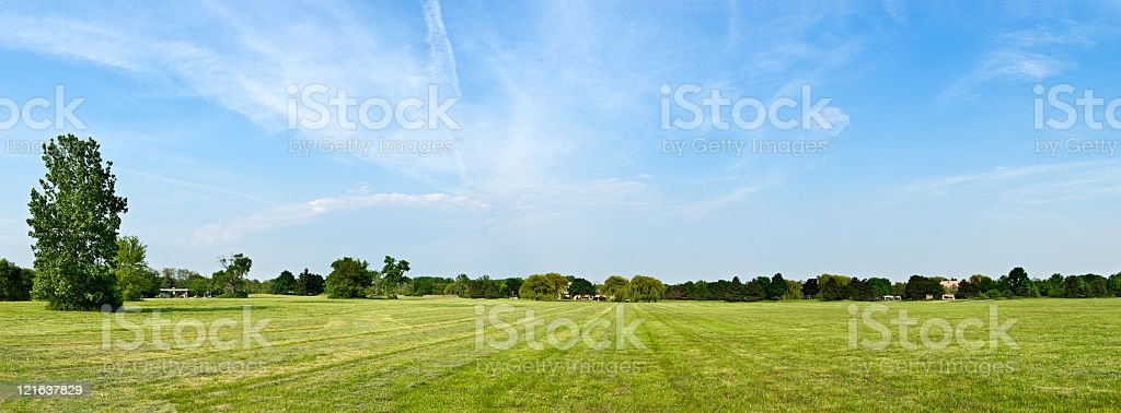 A field of grass edged with trees on a sunny day royalty-free stock photo
