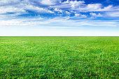 緑の草や夏の日の青い空のフィールド