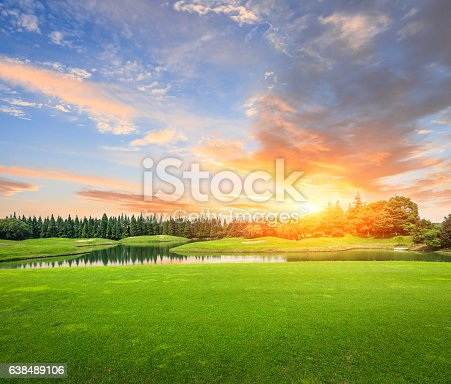 field of green grass at sunset,beautiful natural scenery