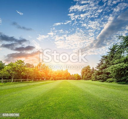 istock field of green grass at sunset 638489286