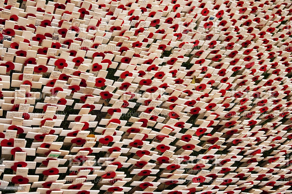 Field of memorial poppies and crosses royalty-free stock photo