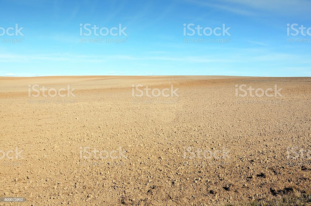 Field of plowed ground. stock photo