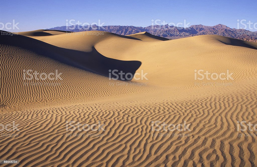 Field of rippled sand dunes in Death Valley royalty-free stock photo