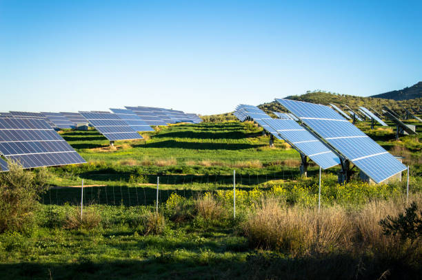 Field Of Solar Panels In A Rural Setting in Andalusia, Spain stock photo