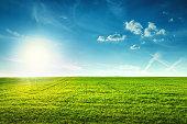 フィールドの春のフレッシュな緑草