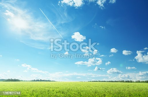 istock field of spring grass and perfect sky 1282821744