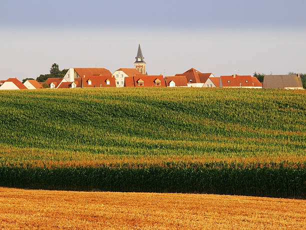 field a field in the countryside in a rural environment aisne stock pictures, royalty-free photos & images